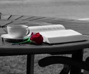 book, coffee, and romance image