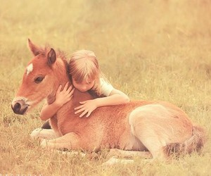 horse, animal, and girl image
