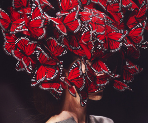 butterfly, red, and model image