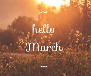 flower, spring, and march image