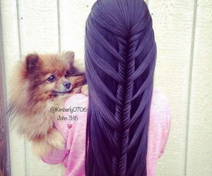 hair, dog, and purple image