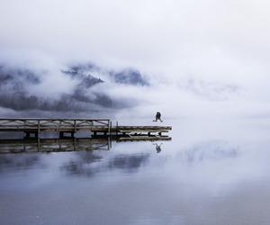 escape, fog, and lake image