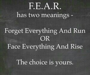 fear, quote, and meaning image