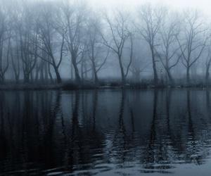 lake, tree, and black and white image
