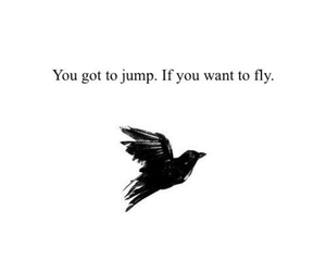 fly, bird, and jump image