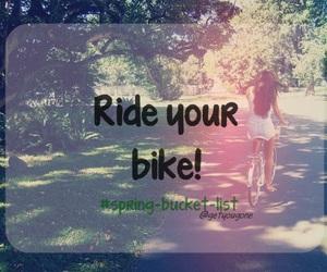 beautiful, bicycle, and fun image