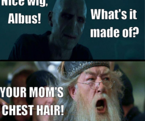 harry potter, funny, and voldemort image