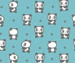 panda and background image