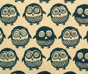 owl, wallpaper, and cute image
