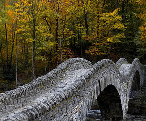 autumn, bridge, and places image