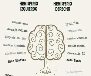 art, left, and brain image