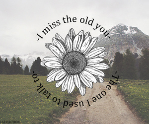quote and the story so far image