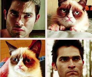 teen wolf, derek hale, and cat image