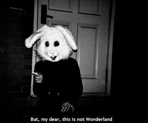 not and wonderland image