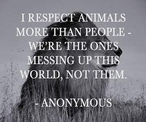 animal, respect, and quotes image