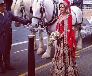 india and sari image