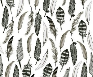 wallpaper, feather, and pattern image