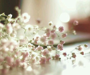 flowers, pink, and prettypinkthings image