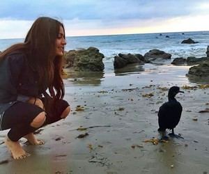 youtuber and andrea russett image