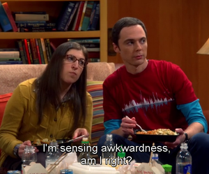 the big bang theory, shamy, and amy image