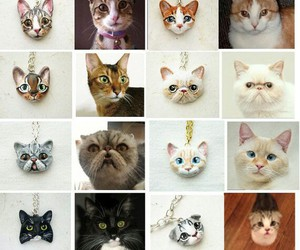 accessory, cat, and crafts image
