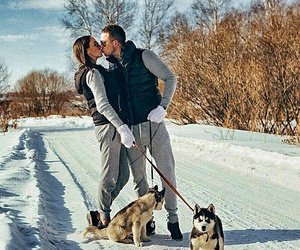love, couple, and dogs image