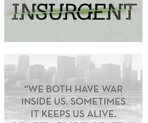 green, grey, and insurgent image