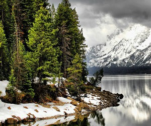 nature, lake, and winter image
