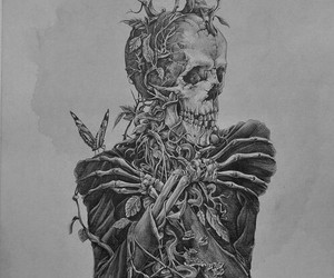art, skull, and skeleton image
