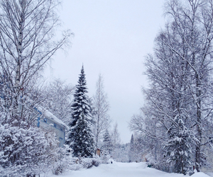beautiful, cold, and finland image