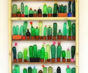 bottle, cactus, and diy image