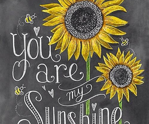 sunflower, sunshine, and quotes image