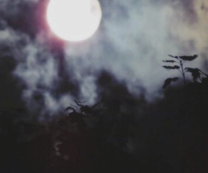 grunge, moon, and twitter image