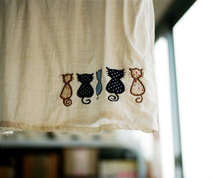 cute, cat, and home image