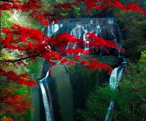 japan, trees, and waterfalls image