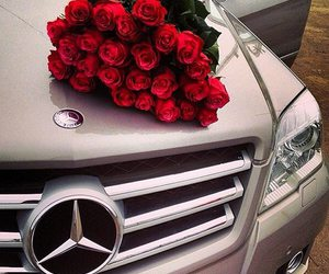 rose, mercedes, and car image
