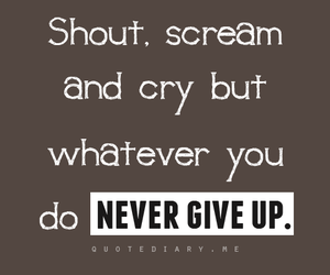 never give up, life, and quote image