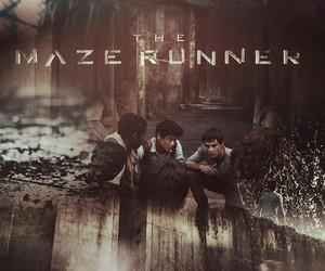 thomas, maze runner, and movie image