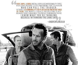 twd, text, and walking dead image