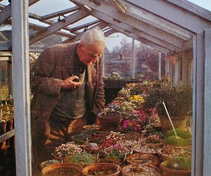 tolkien, flowers, and greenhouse image