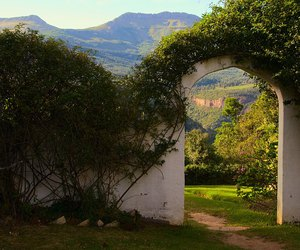 arch, garden, and landscape image