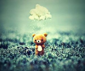 bear, rain, and cute image