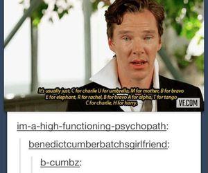 funny, benedict, and benedict cumberbatch image
