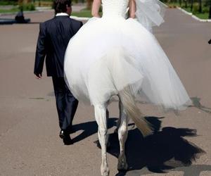 bride, horse, and wedding image