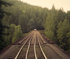 nature, photography, and train tracks image