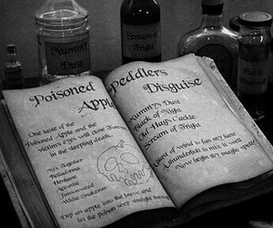 potion, book, and witchcraft image