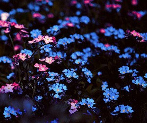 38 Images About Etre Fleur Bleue On We Heart It See More About