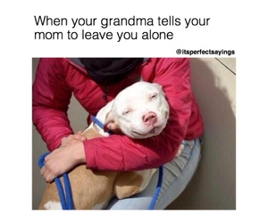 funny and grandma image