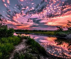 beautiful nature image