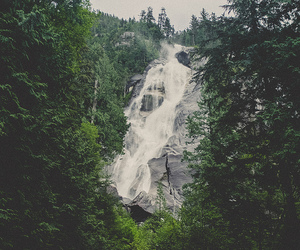 waterfall, forest, and nature image